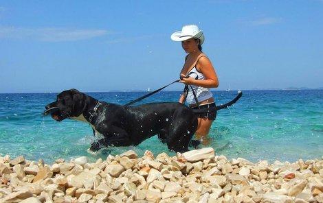 V Chorvatsku najdete přibližně 30 pláží určených pro psy a to včetně oblíbených lokalit jako je Pula, Pag, Umag, Rijeka, Bol, Trogir, Vis, Split anebo Dubrovnik.