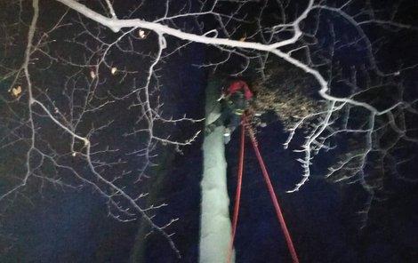 Dramatická záchrana paraglidisty: Hned po startu ho vítr zavál do stromů