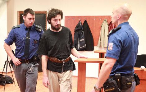 Hryščenka soud poslal na 16 let do vězení.