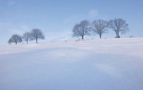 Sněhohry