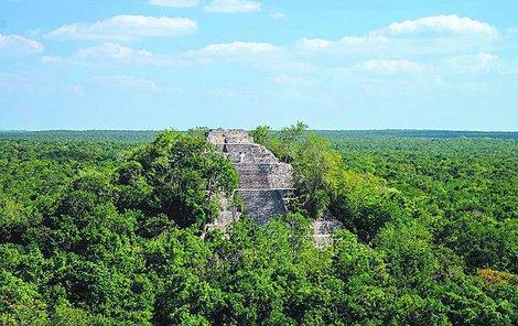 Pyramida je ukrytá v husté džungli.