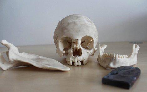 Repliky ostatků z 3D tiskárny.