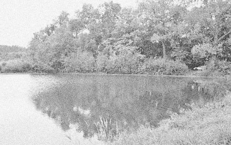 Tělo nešťastné seniorky skončilo v rybníce.