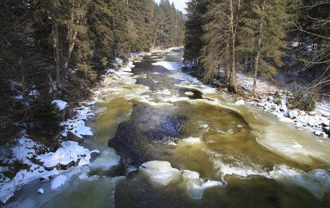 Otava je na Šumavě zbarvená dozelena.