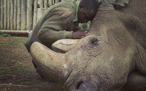 Ošetřovatel Zacharia Mutai při posledních chvílích s umírajícím Sudánem.