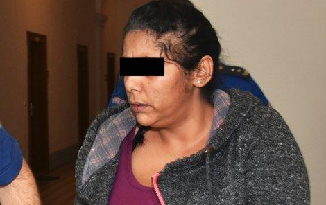 Magdalenu C. (40) teď poslal soud v Plzni na čtyři roky do vězení.