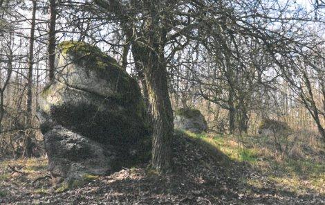Na tomto místě u tří balvanů, v lesíku u Stebna, byl poklad nalezen.