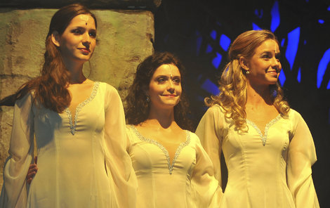 V muzikálu Robin Hood s Lucií Šoralovou.
