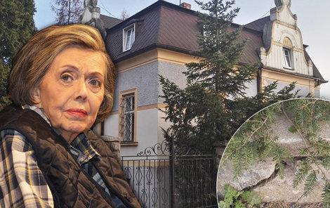 Chátrající dům, který patřil rodině Podskalských.
