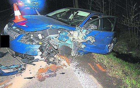 Nehodě už nemohl řidič zabránit.
