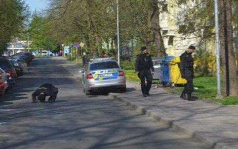 Policisté prohledávali křoví, dívali se i pod zaparkovaná auta.