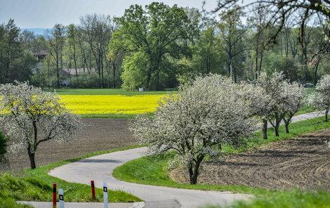 Teplé jarní počasí v Česku pokračuje