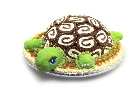 želva dort