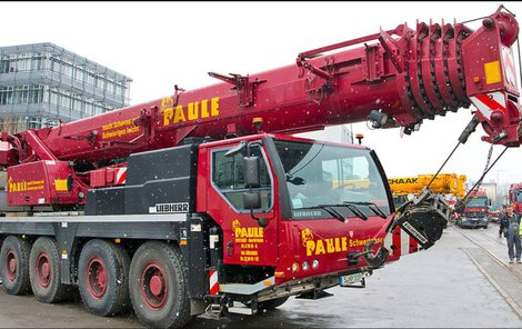 Šéfka firmy Nathalie Paule vyhlásila za vypátrání jeřábu odměnu v přepočtu 130 000 korun.