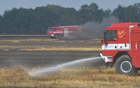 Nejen zvýšené riziko požárů a nedostatek vody přináší suché a horké léto, které právě prožíváme.