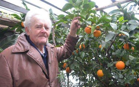 Josef Boukal s letošní úrodou pomerančů.