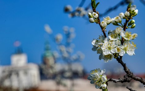 Jarní počasí v Česku