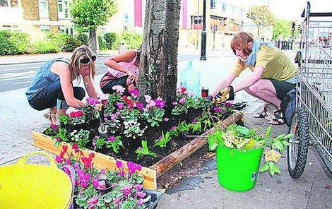 Lidé sázejí květiny na veřejných místech i jako protest proti neutěšenému stavu okolí.