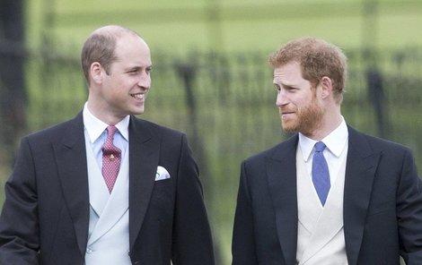 William předává Harrymu rodičovské zkušenosti