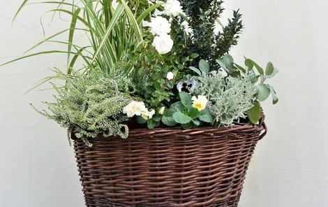 Květiny v koši - bílá