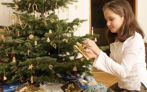 Ozdoby z přírodních materiálů k svátkům patří.
