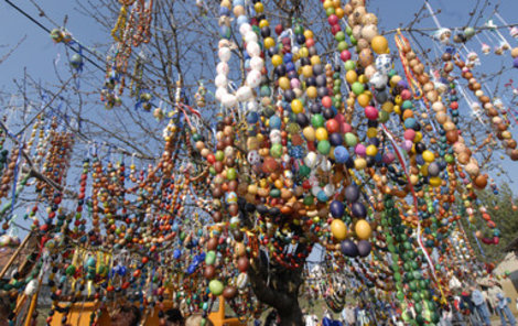 V Nahořanech na Náchodsku padl v sobotu český rekord v počtu velikonočních kraslic zavěšených na jednom stromě. Na třešeň v centru obce školáci, hasiči a obyvatelé obce pověsili 12 913 barevných vajíček. Dosavadní rekord v české k