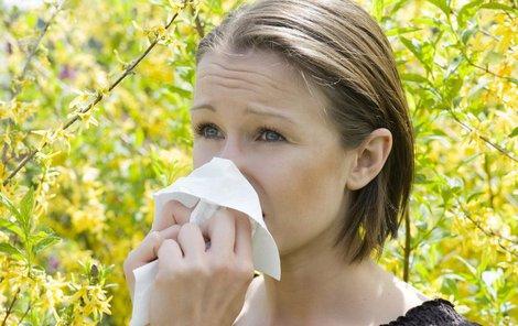 Bez kapesníku se alergik na jaře obvykle neobejde.