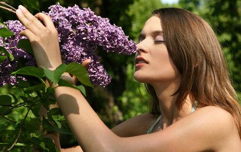 Šeřík kvete právě v těchto dnech. Pokud chcete využít jeho léčivé síly, pospěště si, za pár dnů květy zmizí.