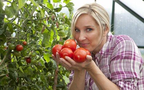 Rajčata z vlastní zahrady mají lepší chuť a zpravidla i barvu než ta kupovaná.