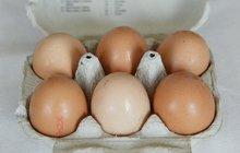 VELKÝ RÁDCE: Jak v obchodě vybrat kvalitní vejce a poznat ta stará