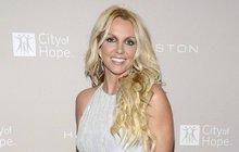 Malířka Britney Spears dražila svůj obraz