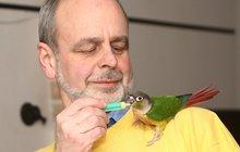 »Kojná« přes papoušky: Pyrura nejsou ptáci, to jsou klauni, mazlové a kámoši!