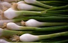 Jarní cibulka je vitaminová bomba!