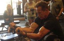 Schwarzenegger (66) to nevzdává: Pořád maká jako stroj!