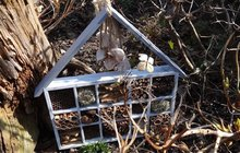 Naprosto originální domeček pro hmyz! Aneb když tvoří Monika (23) a Katka (43) z Hradce Králové