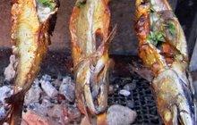 Opravdová rybí pochoutka! To jsou grilované makrely s libečkem podle Otto Pláška
