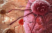 Češi mají evropský patent na nového bijce rakoviny!