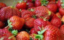 Jahody, jablka, zelenina má letos méně vitaminů než dříve: Proč?