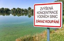 Další nástrahy vodních ploch: Pozor na sinice a na rizikové potápění!