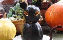 Dekorace k Halloweenu od Jitky (52) ze Strakonic: To je černá kočka z dýně!