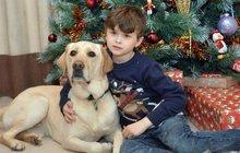 Autista (8) si poprvé užil Vánoce: S tím nejdůležitějším mu pomohl pes!