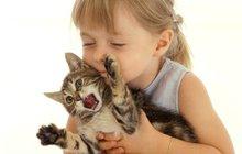 Proč kočky mňoukají? Tomu neuvěříte!