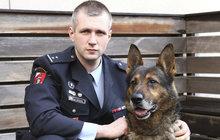 Největší psí hrdinové Česka: Art uzdravuje děti! Polux zachránil sebevraha!