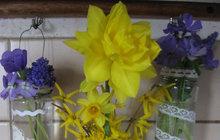 Provoní i ozdobí kuchyni: Zavěste si květiny nad linku!