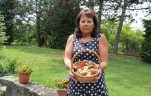 Boženka (62) vyrazila na procházku: Našla 17 praváků!