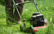 Jak ochránit pažit před letním sluncem: 10 rad pro krásný trávník!