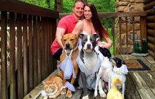 Pár adoptoval hned sedm zvířecích sirotků!