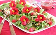 Jedlé květiny – voňavé a plné vitaminů: Krása na talíři!