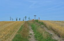 Ve stínu šibenice na vršku nad Křenovicemi: Tady obchází smrt! Už 500 let!