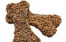 PSÍ SPECIÁL: Čím nakrmit čtyřnohé miláčky? Poradíme vám, zda jsou lepší granule či maso!